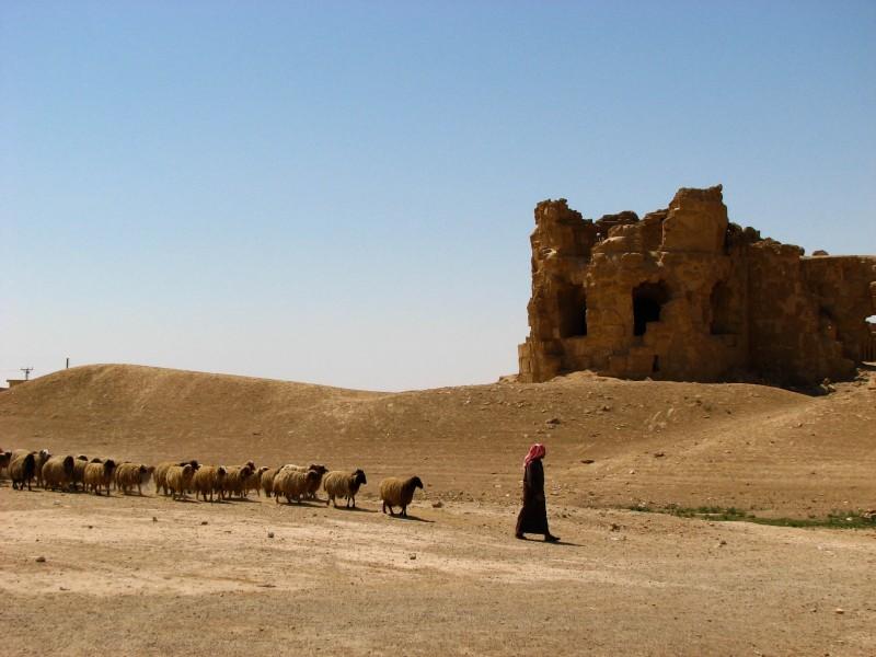 Al-Rasafa-11-2