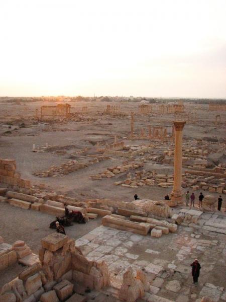 Palmyra-9-2