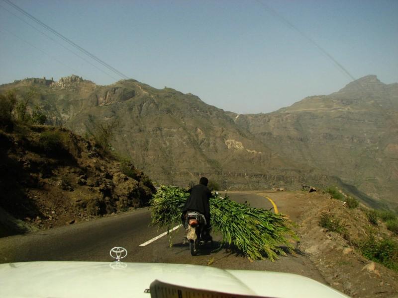 Jabal-Bura-Tihama-West-1-2