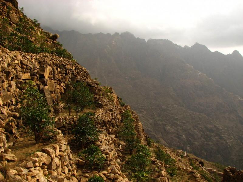 Jabal-Bura-Tihama-West-7-2