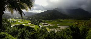 Kauai, 2015