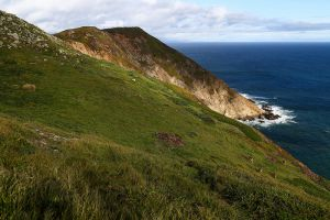 Point Reyes National Seashore, 2014
