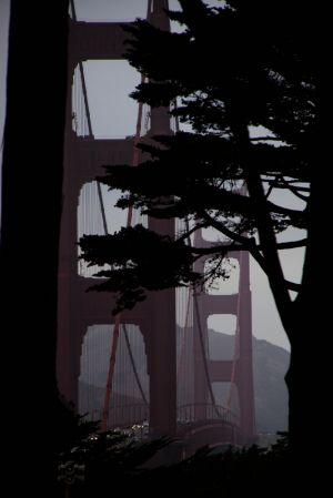San Francisco, 2013