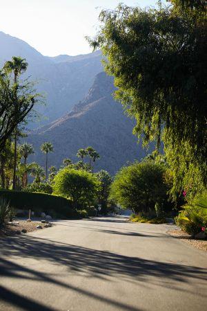 Palm Springs, 2014