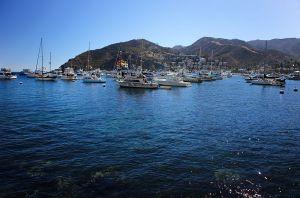 Santa Catalina Island, 2014