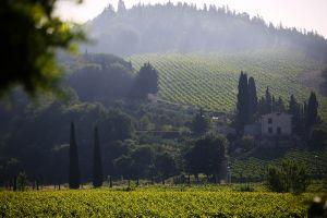 Tuscany, 2014