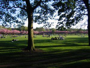 Edinburgh, 2006