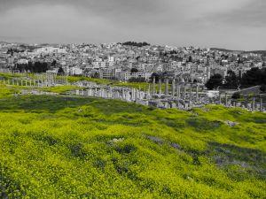 Jerash, 2009