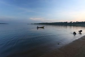 Lake Victoria, 2015