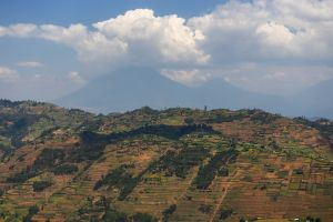 View of the Virungas, near Kabale, 2017