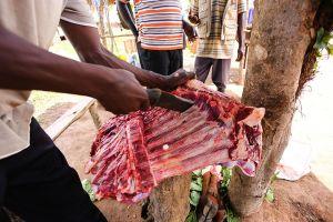 Kiboga Livestock Market, 2015