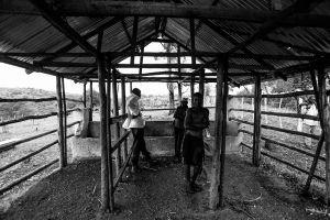 Farm in Kiruhura, 2015