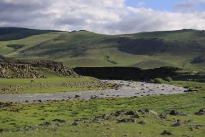 Orkhon Valley, 2011
