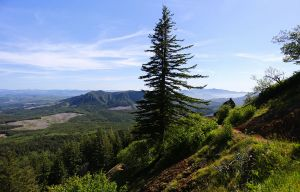 Saddle Mountain, Oregon, 2015