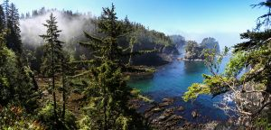Cape Flattery, Olympic Peninsula, 2017