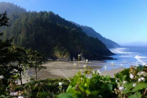 Oregon Coast, 2015