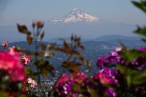 Portland, Oregon, 2013